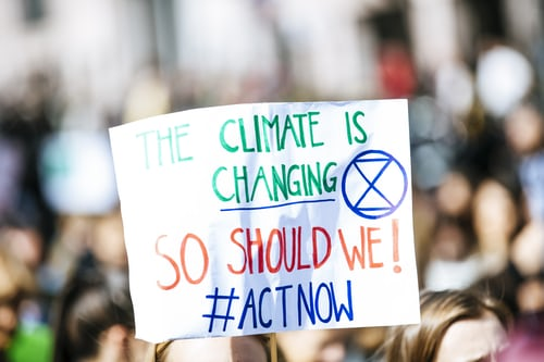 How To Fight Global Warming and Climate Change as An Individual Person